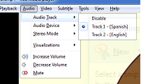 MultipleAudioTrackFileVLC.png