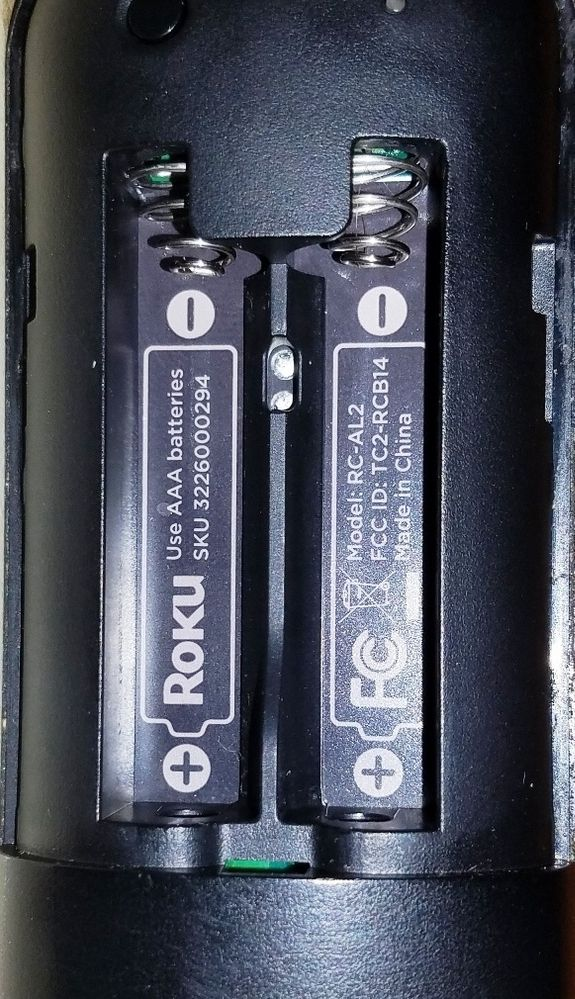 Voice Remote Battery Springs
